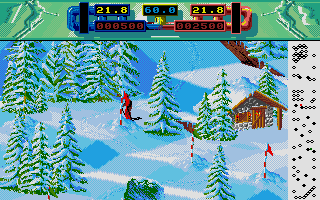 Screenshot of Advanced Ski Simulator
