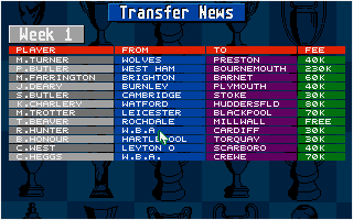 Screenshot of Championship Manager 93
