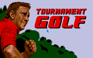 Large screenshot of Tournament Golf