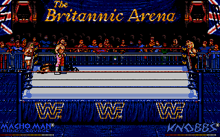 Screenshot of WWF European Rampage Tour