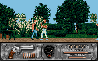 Screenshot of Wild Streets