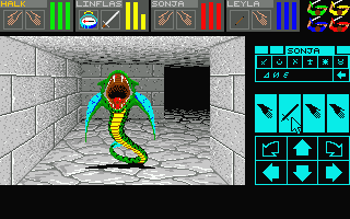 Screenshot of Dungeon Master